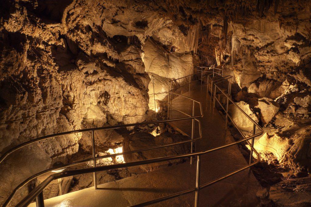 Lake-Shasta-Caverns-4-scaled