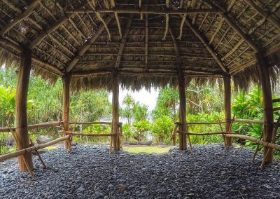 National Tropical Botanic Garden