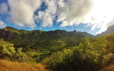 Community of Kauai